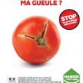 affiche anti-gaspi